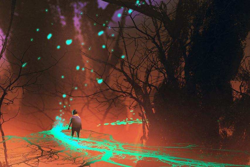 Floresta sombria e seres misteriosos