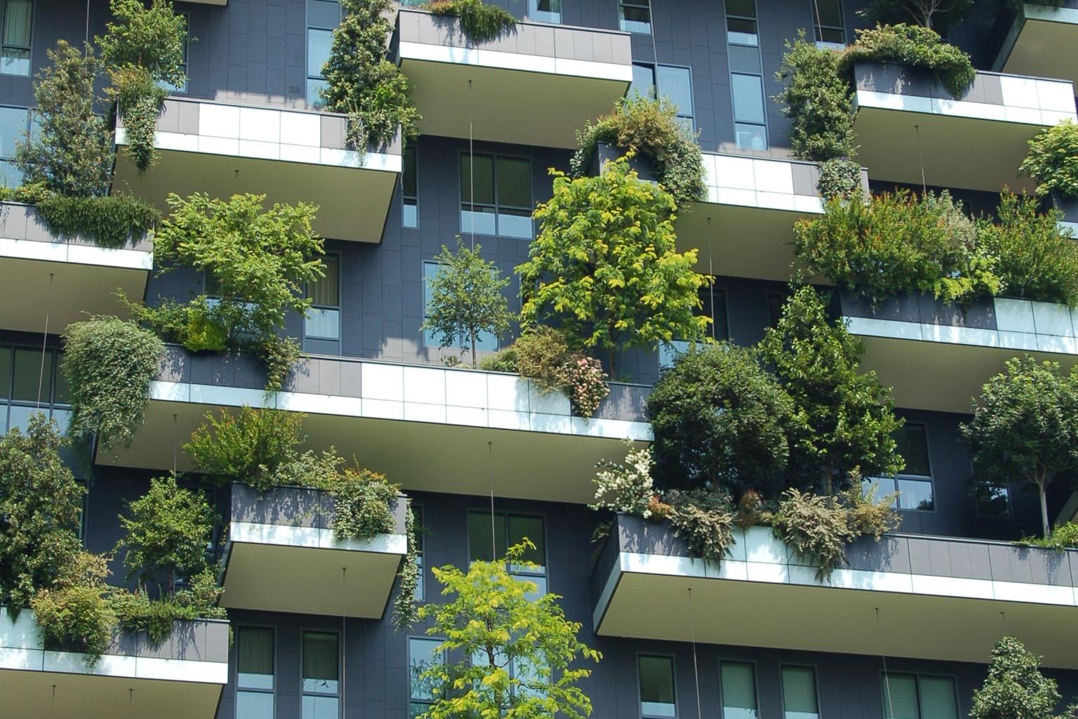urbanização sustentável